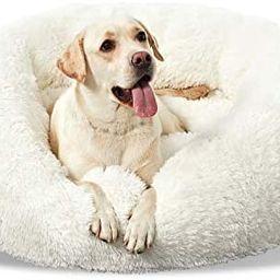 Washable Dog Round Bed Medium, Donut Dog Bed Medium Dog, Comfy Dog Calming Cuddler Bed | Amazon (US)