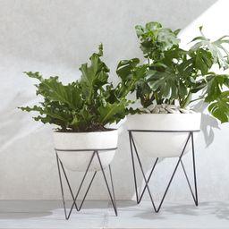Iris Indoor/Outdoor Planter On Stand   West Elm (US)
