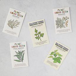 Herb Garden Seeds, 5 Packets | Terrain