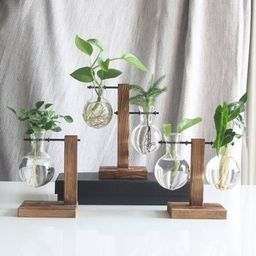 Glass Planter Bulb Vase with Wooden Stand  Terrarium Hydroponic Plant Vases Vintage Flower Pot   Etsy (US)