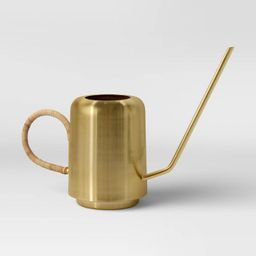 Large Iron Watering Can Gold - Opalhouse™ | Target