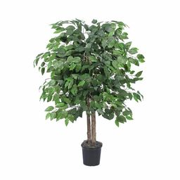 Silk Bush Ficus Tree in Planter   Wayfair North America