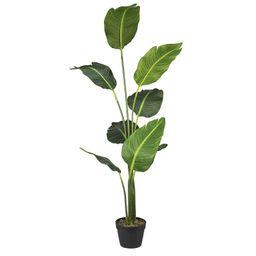 "60"" Artificial Banana Leaf Tree in Pot   Wayfair Professional"