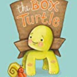 The Box Turtle | Amazon (US)