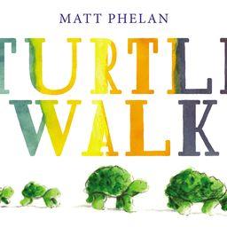 Turtle Walk (Hardcover) | Walmart (US)