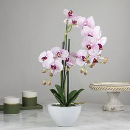Artificial Orchids Floral Centerpieces in Pot   Wayfair North America