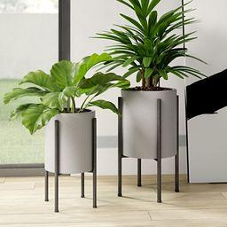 Pratcher 2 - Piece Iron Pot Planter Set With Trellis | Wayfair Professional