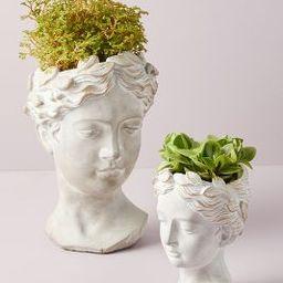 Grecian Bust Pot | Anthropologie (US)