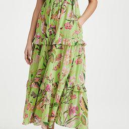 Iris Dress   Shopbop