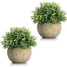 Velener Mini Plastic Artificial Plants Benn Grass in Pot for Home Decor (Set of 2)   Amazon (US)