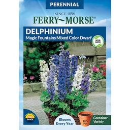 Ferry-Morse Delphinium Magic Fountain Mixed Color Dwarf Seed-5606 - The Home Depot | The Home Depot