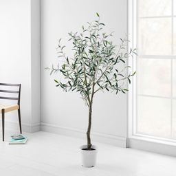Faux Potted Green Olive Tree - 6' | West Elm (US)
