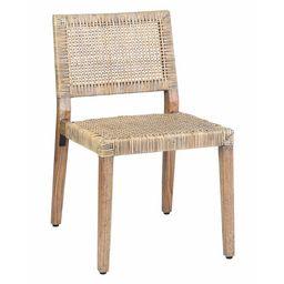Alani Wicker/Rattan Side Chair (Set of 2) | Wayfair North America