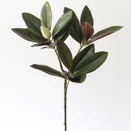 "Artificial Magnolia Leaf Spray in Dark Green - 34.5"" Tall | Afloral (US)"