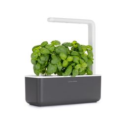The Smart Garden LED Grow Set | West Elm (US)