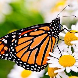 Gardening Know How: Attracting Birds and Butterflies   Udemy