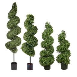 Spiral Outdoor Boxwood Topiary   Frontgate
