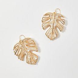 Leaf Drop Earrings   Ann Taylor   Ann Taylor (US)