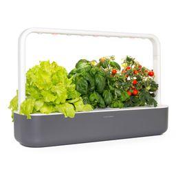 Smart Garden 9 Self Watering Indoor Garden | Nordstrom