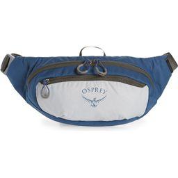Osprey Daylite® Waist Pack | Nordstrom | Nordstrom