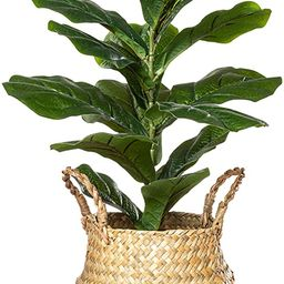 """PLANTAE Artificial Fiddle Leaf Fig Tree Ficus Lyrata Faux Realistic 20"""" Inch Tall 18 Leaves for H... 