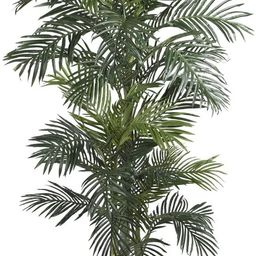 Nearly Natural 5289 6.5ft. Golden Cane Palm Silk Tree,Green   Amazon (US)