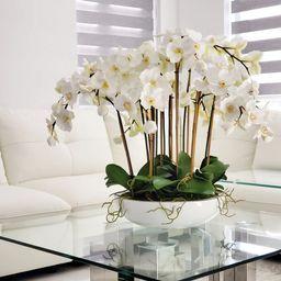 White Orchids On Monique Fiberglass Bowl | Wayfair North America
