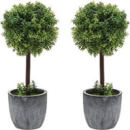 Set of 2 Small Realistic Artificial Boxwood Topiary Trees / Faux Tabletop Plants w/ Gray Ceramic ... | Amazon (US)
