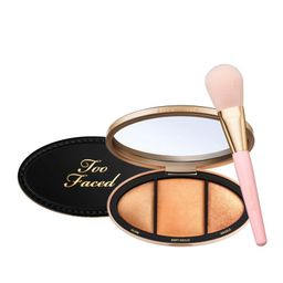 Too Faced Born This Way Turn Up the Light Palette with Brush   HSN