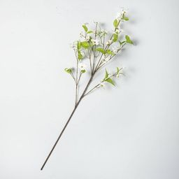 Faux White Dogwood Flower Stem - Hearth & Hand™ with Magnolia | Target