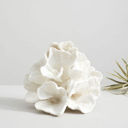 Faux White Wave Coral | Pottery Barn (US)