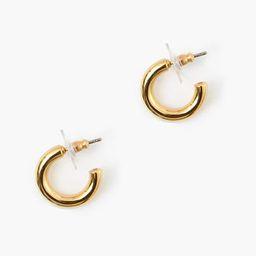 Gold Mini Hoop Earrings | Tuckernuck (US)