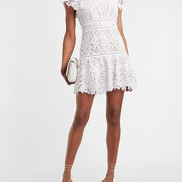 Lace Ruffle Sleeve Fit And Flare Dress   Express