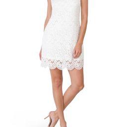 Sleeveless Lace Cocktail Dress   TJ Maxx