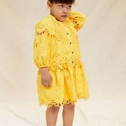 Tallulah Eyelet Kids Dress   Anthropologie (US)