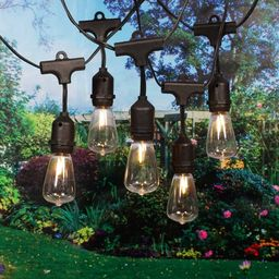 Better Homes & Gardens 15 Count Edison Bulb String Lights, Black Wire | Walmart (US)