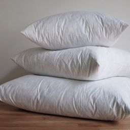 Pillow Inserts, Small to Large   Coterie, Brooklyn
