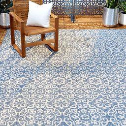 "Home Dynamix Patio Country Danica Area Rug, 5'2""x7'2"", Blue/Gray | Amazon (US)"
