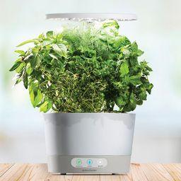 AeroGarden Harvest 360 with Gourmet Herb Seed Pod Kit, White | Kohl's
