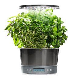 AeroGarden Harvest Elite 360 with Gourmet Herb Seed Pod Kit | Kohl's