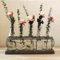 Funsoba Rustic 5 Glass Bottles Bud Vase Set for Hydroponics Plants Home Garden Wedding Centerpiec...   Amazon (US)