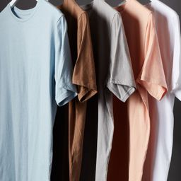 PS Basics 5-Pack Spring Scallop T-Shirts | PacSun