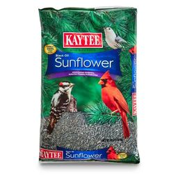 Kaytee Sunflower Seed Bird Food - 10lb.   Target