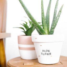 Aloe There Pot Aloe Plant Pun Aloe Puns Plant Pun | Etsy | Etsy (US)