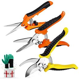 3 Pack Garden Pruning Shears Stainless Steel Blades Handheld Pruners Set with Gardening Gloves   Amazon (US)
