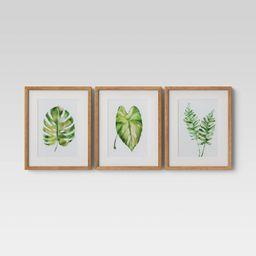 "(Set of 3) 16"" x 20"" Leaf Framed Wall Print - Threshold™   Target"