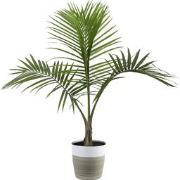 Costa Farms Majesty Palm Tree, Live Indoor Plant, 3 to 4-Feet Tall, Ships with Décor Planter, Fr... | Walmart (US)