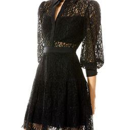 Anaya Collared Lace Mini Dress | Bloomingdale's (US)