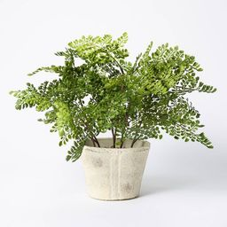 """18"""" x 15"""" Artificial Fern Plant in Pot - Threshold™ designed with Studio McGee 