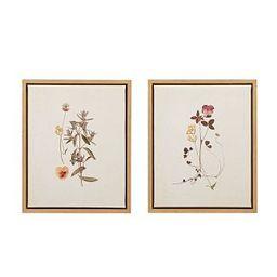 2pc French Herbarium Framed Linen Canvas - Martha Stewart | Target
